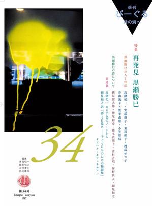 Beagle34_hyoshi2