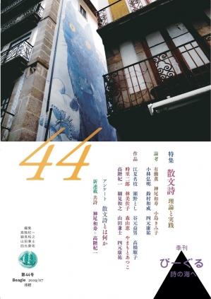 Beagle44_hyoshi1